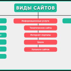 vidu-saitov1