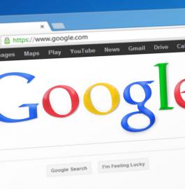 Основные особенности алгоритма Google Panda