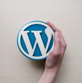 Плюсы и минусы (преимущества и недостатки) CMS WordPress